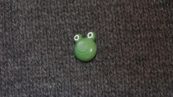 Frosch Gesicht